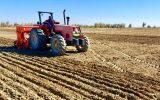 واگذاری ٣١۴ دستگاه انواع تراکتور به کشاورزان سیستان وبلوچستان