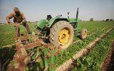 تحویل ۲۲ میلیون لیتر سوخت نفت گاز به کشاورزان خراسان جنوبی در سال گذشته