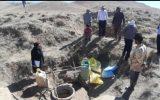 اثرات نامطلوب خشکسالی بر صنعت دامپروری شهرستان فریمان